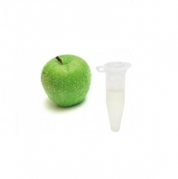 Ароматизатор Capella Flavors USA Зеленое яблоко 1 мл