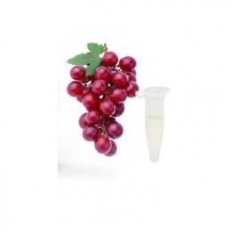 Ароматизатор Capella Flavors USA Виноград 1 мл